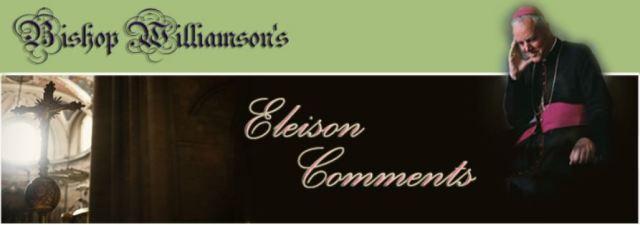 bishop_williamson_comments